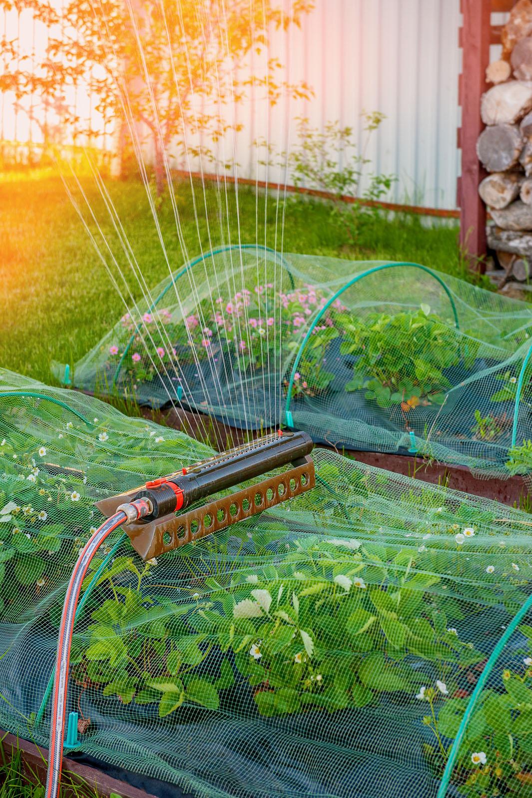 About Williston Irrigation - Minneapolis, MN